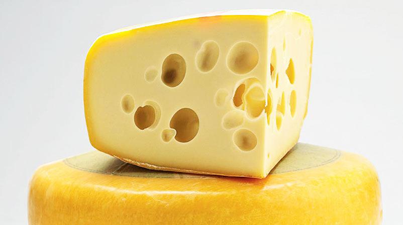 Prolactis Semi Hard Cheese