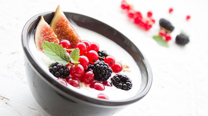 Prolactis Yoghurts